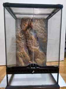 Upright position reptiles tank 1/1/2. feet tall and 1/foot width