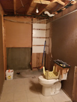 Bathroom Renovation - Experienced Quotes Wanted