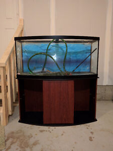 Aquarium 72 Gallons bowfront with stand