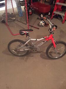 NEXT Surge Kids Bike