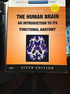 The Human Brain. 6th edition. Kitchener / Waterloo Kitchener Area image 1