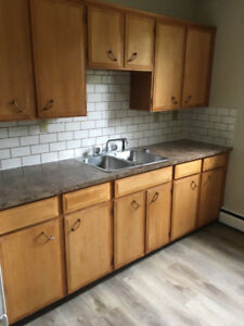 Renovated apartments for rent