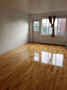 Spacious renovated 1 bedroom apartments