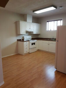 Available Immediately -Spacious Basement for Rent!! - Millwoods