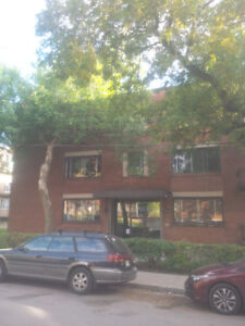 Large 5 1/2 - renovated - ALL INCLUDED - APRIL 1st 2018