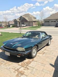 Vintage Jaguar Convertible
