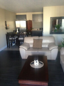 Downtown fully furnished modern LARGE 1 bedroom