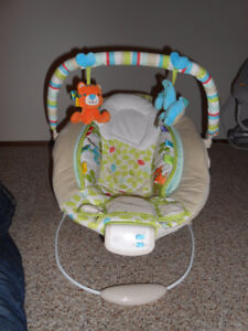 Comfort & Inguinity bouncy chair