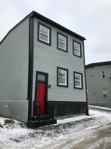 Newly Renovated 2 bedroom Uptown Heritage Home with Parking