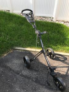 chariot ou voiturette de golf