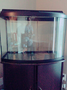 40gallon fish tank with wood stand