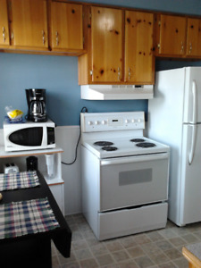 Central, Clean, Quiet, Furnished 2 Bedroom For Rent - June 1