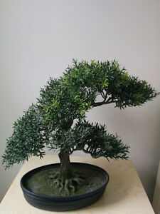 Decorator plant.