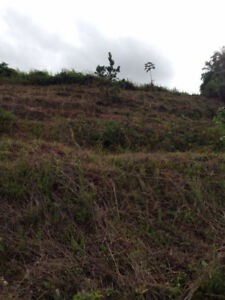 Residential land for sale: Windsor Heights, Arima, Trinidad