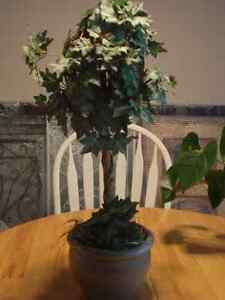 Silk Topiary plant with pot. London Ontario image 1