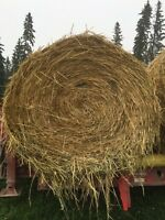 Oat green feed bales for sale