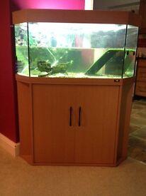 Juwel delta 150litre aquarium and cabinet