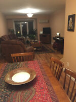 Furnished Apartment and Room, Downtown, Underground Parking!