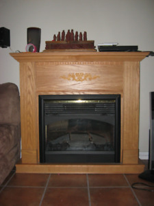 Electric wood fireplace
