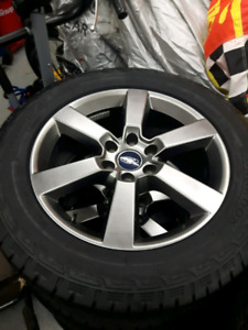 Mags f150 20 pouces