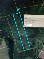 Woodlot for sale close to Mill Hill Warming Shelter