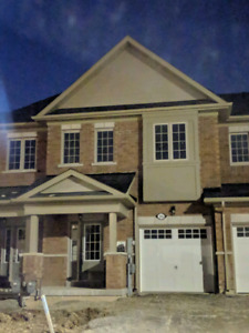 Brand New House For Rent In Thorold Niagara