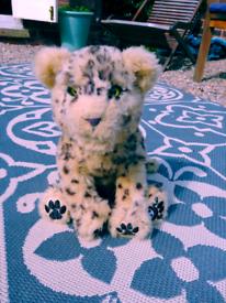 Lion soft toy.