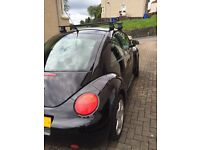 VW Beetle 02 (on private plate)