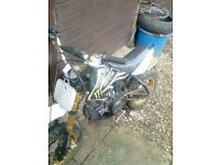 110cc lifan pitbike