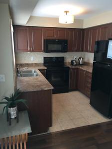 2 Bedroom Condo/Apartment