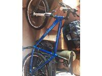 """Carrera Bike 21"""" good condition"""