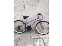 Mountain Apollo bike 24 inch