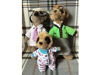 Meerkat teddies