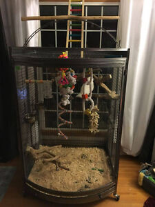 Large Parrot Cage- in Great Condition *Reduced Price*