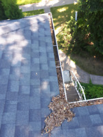 Eavestrough Cleaning and Window Cleaning