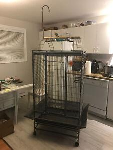 Cage perroquet comme neuve