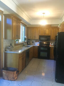 Solid Oak Cabinets and Granite counter