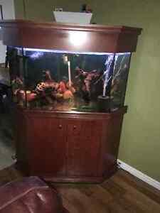Aquarium a vendre avec le meuble seulement