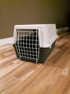 cage for a cat or a small dog