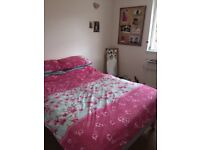Double bedroom in modern shared house,DD1!