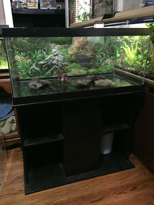 47 Gallon Aquarium - 36 x 18 x 17 - Tank and Wood Stand only