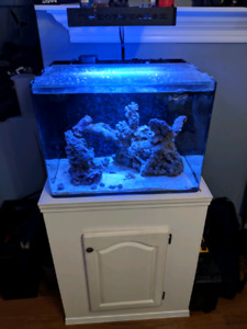 JBJ all in one reef tank PART OUT