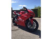 Ducati 1098 2009