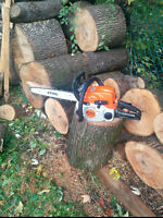 Tree cutting/pruning services