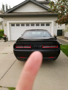 2015 Dodge challenger with XPEL protective film
