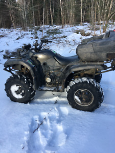2003 grizzly 660