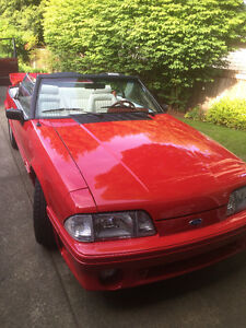 Convertible Mustang GT - Ready for Collectors Plates!