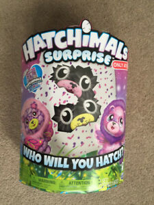 Original Hatchimal - NEW IN BOX - NEVER OPENED - duplicated gift