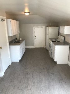 Available Immediately- Newly Renovated 1 Bedroom