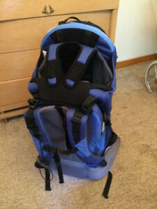 Kelty Kids FC3 Child Carrier Backpack
